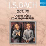 Konrad Junghanel (lute, conductor), Cantus Koln - J.S. Bach: Motets (Japan Import)