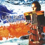 David Boyles - Southern Fried (Japan Import)