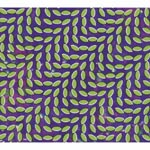 Animal Collective - Merriweather Post Pavilion (Japan Import)