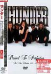 THUNDER - FLAWED TO PERFECTION(THE VIDEO COLLECTION 1990-1995) DVD (Japan Import)