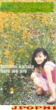 Tomomi Kahala - here we are (Japan Import)